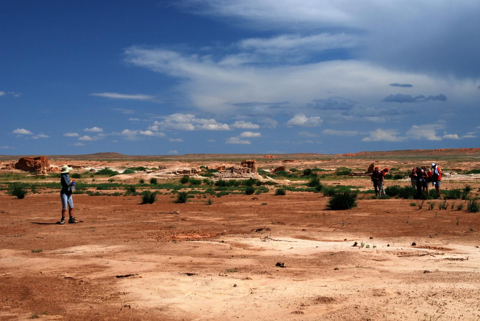 Gobi und Steppe: Wüste Gobi