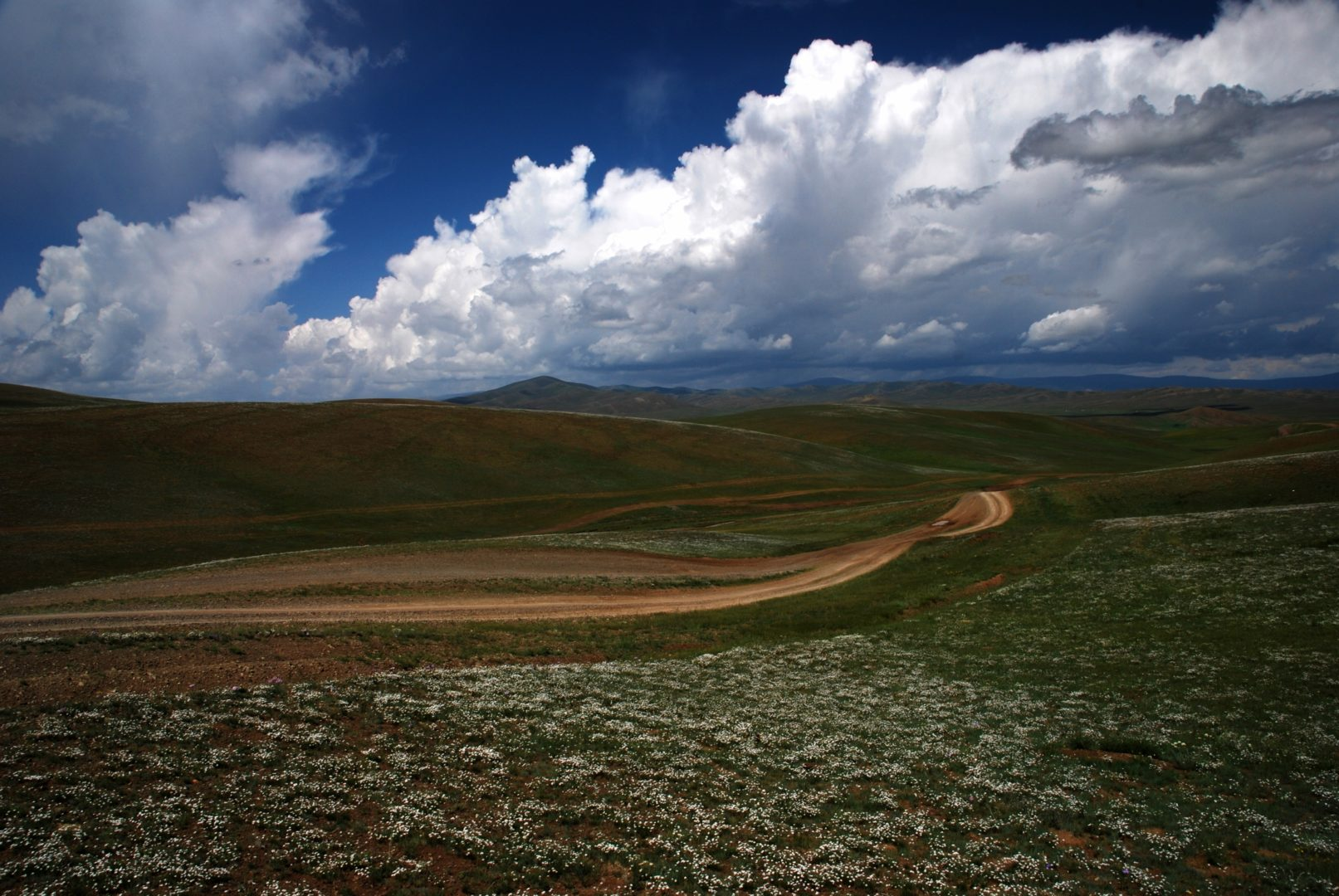 Mongolei: Gobi und Steppe