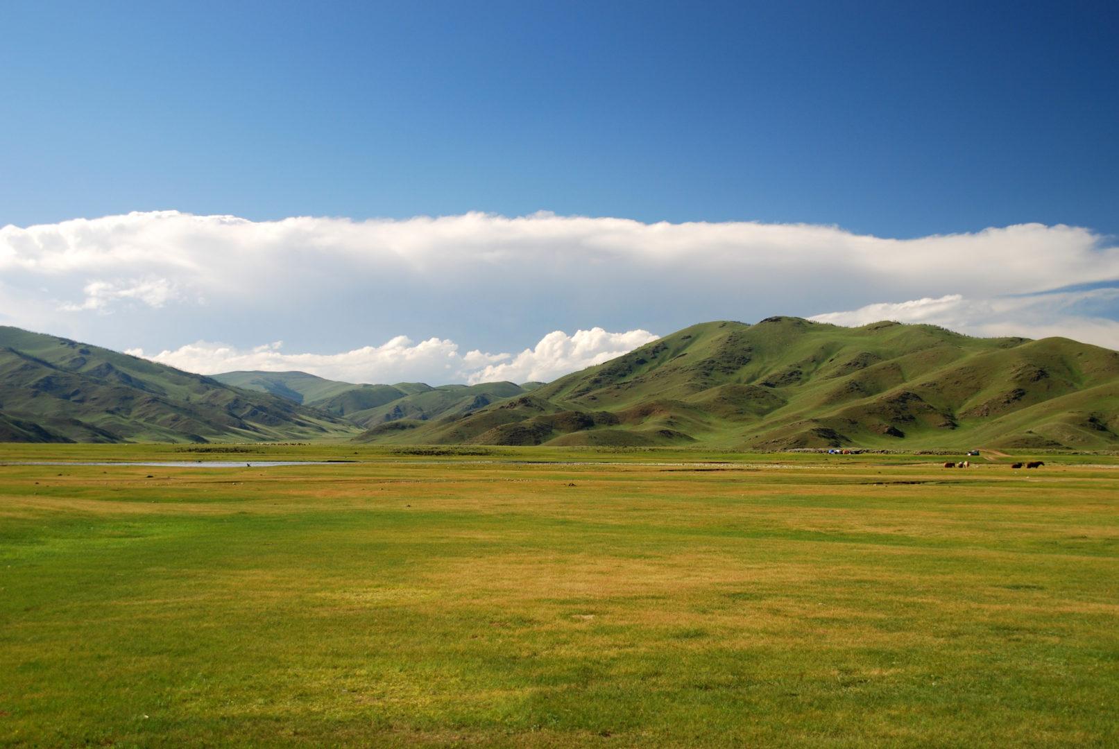 Tal in der Zentralmongolei
