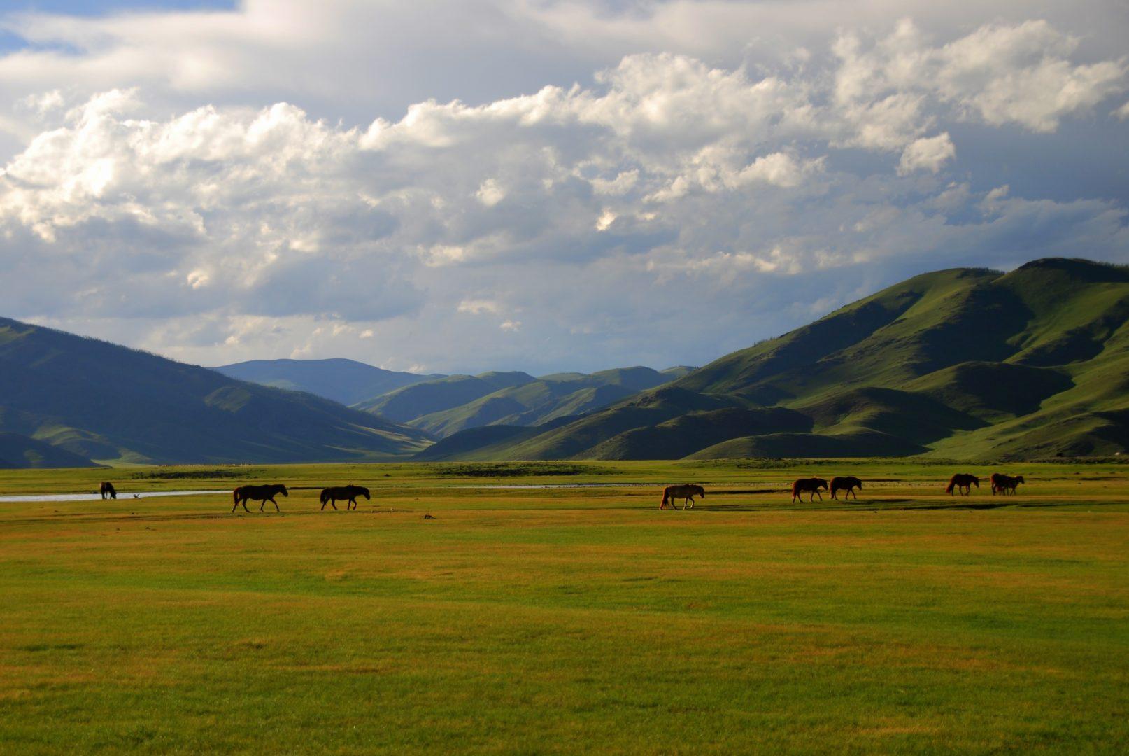 Landschaft, Mongolei