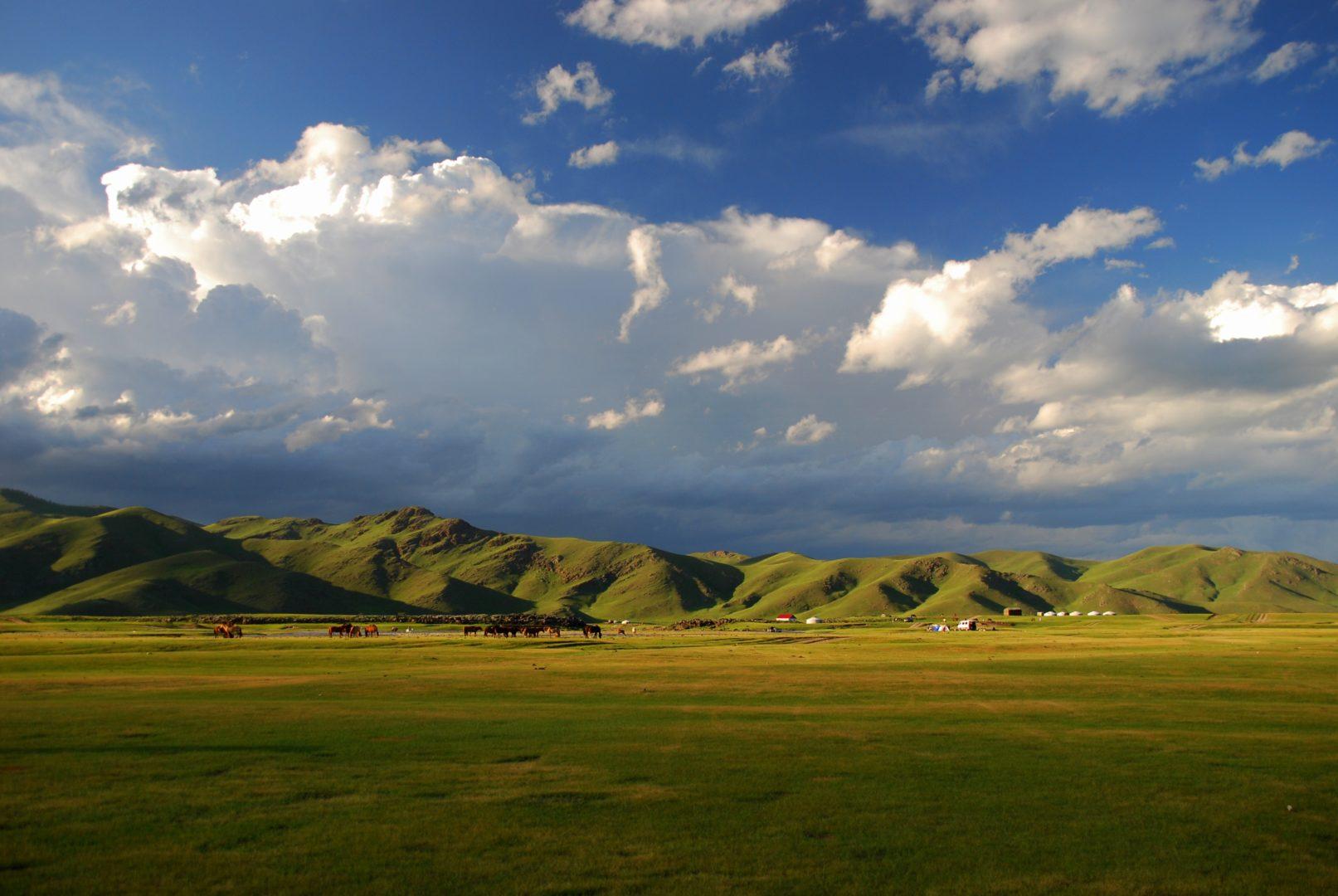 Mongolei-Reise: Zentralmongolei, Steppe
