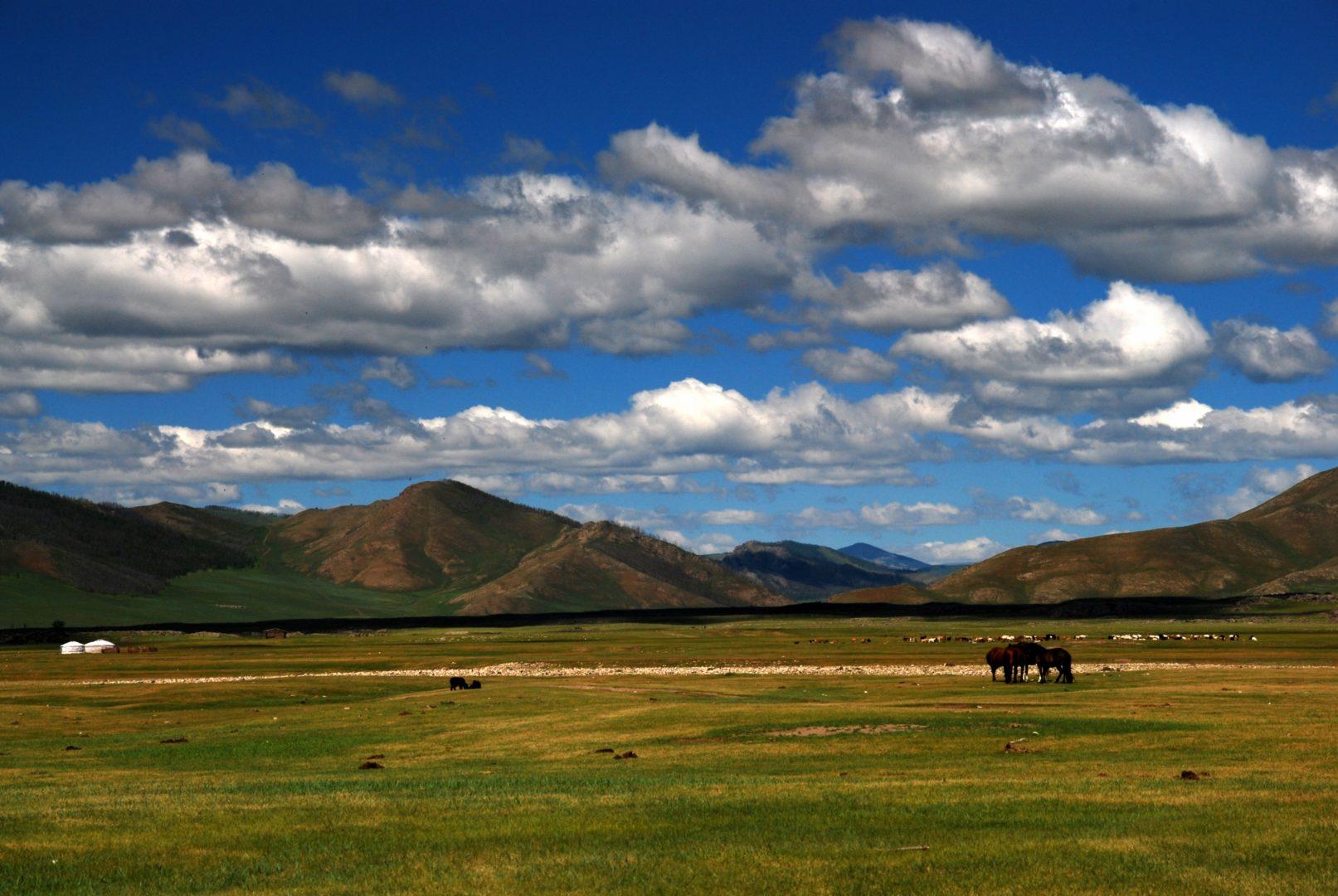 Mongolei-Reise: Steppe