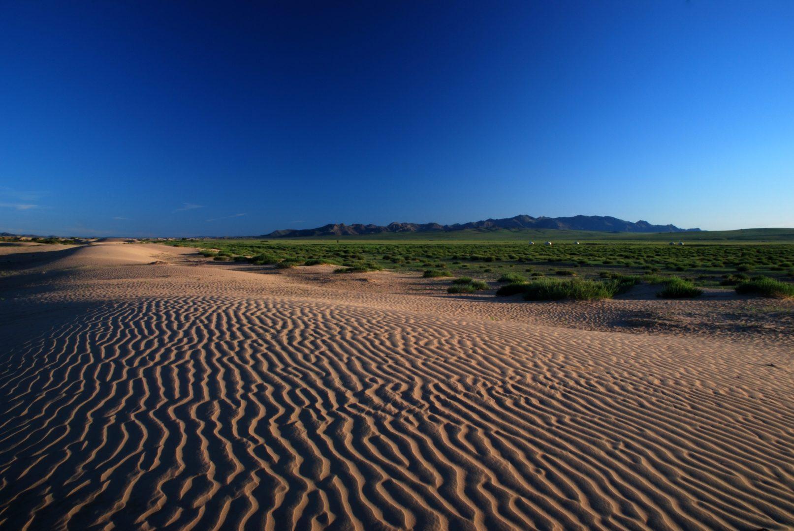 Mongolei-Reisen, Literatur: Sanddüne