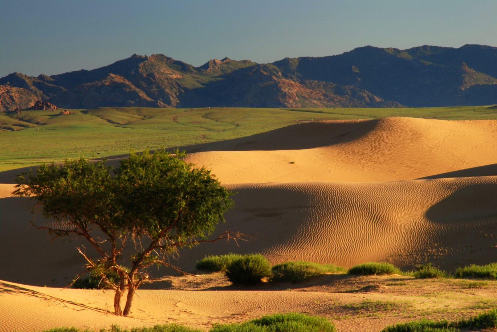 Mongolei-Reise Kurzreise