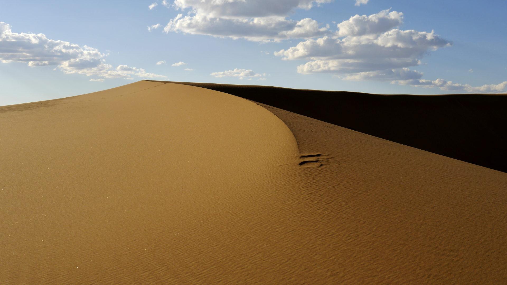 Mongolei-Reise: Sanddüne Mongol-Els