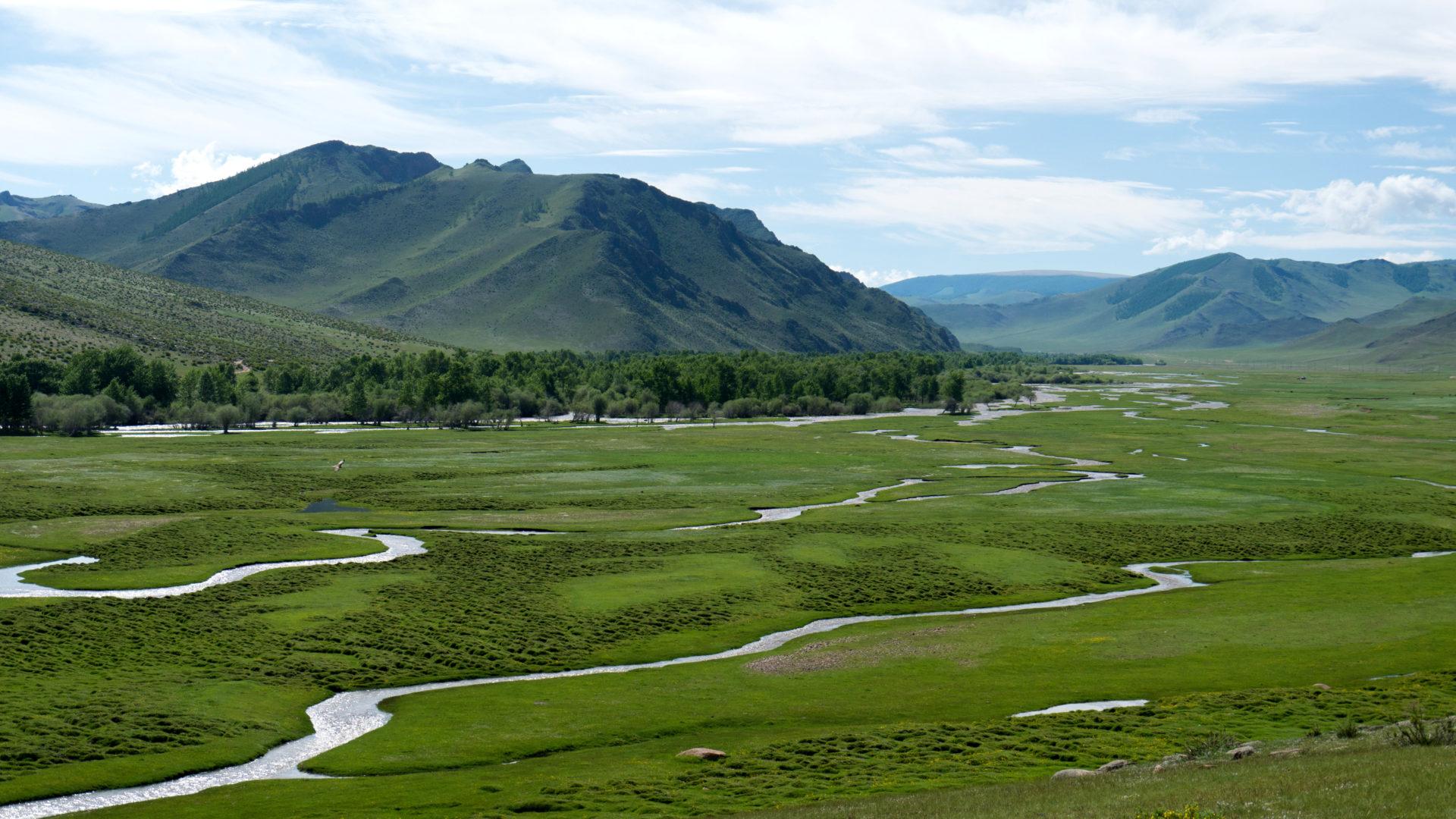 Mongolei-Reise: Paradies im Westen, Nordwesten der Mongolei