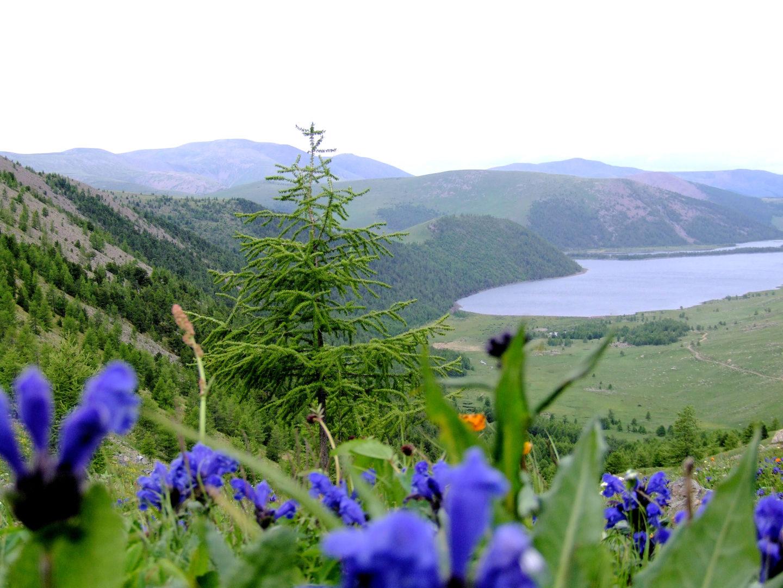 Mongolei-Reise: Naiman-See